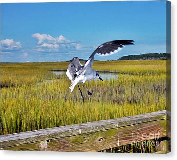 Huntington Beach Marsh Canvas Print