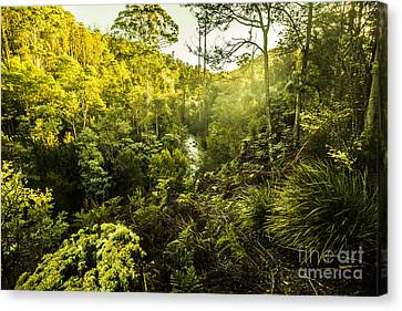 Huon Valley Canvas Print by Jorgo Photography - Wall Art Gallery