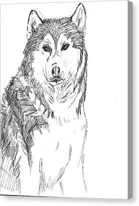 Husky Canvas Print by Charme Curtin