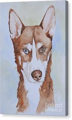 Husky Canvas Print - Husky by Gretchen Bjornson