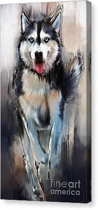 Husky Canvas Print - Husky by Melanie D