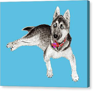 Husky Puppy Bella Canvas Print