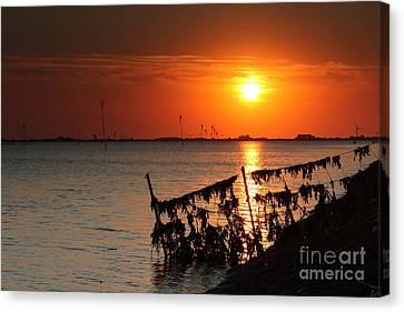 Husum Sunset Canvas Print