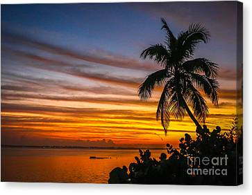 Hutchinson Island Sunrise #1 Canvas Print by Tom Claud