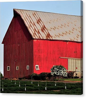 Hwy 47 Red Barn 21x21 Canvas Print by Jerry Sodorff