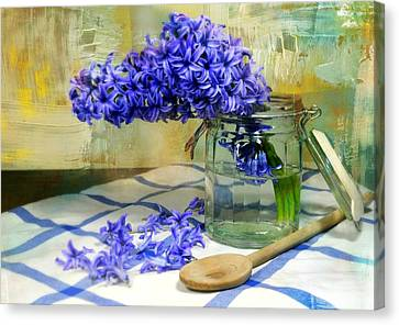 Hyacinth Canvas Print by Diana Angstadt