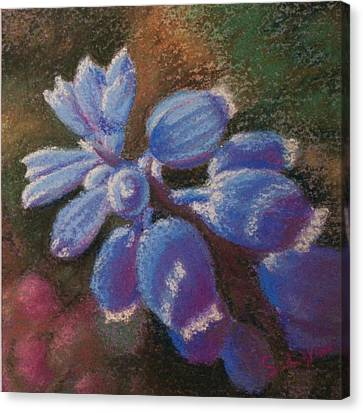 Hyacinth Dream Canvas Print