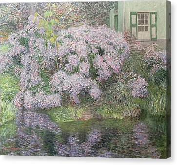 Hydrangeas On The Banks Of The River Lys Canvas Print by Emile Claus