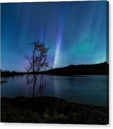 Hymn Of The Night Canvas Print by Tor-Ivar Naess