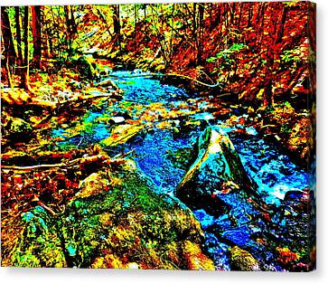 Hyper Childs Brook Z 5 Canvas Print by George Ramos