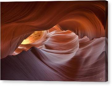Hypnotized  Canvas Print by Peter Coskun