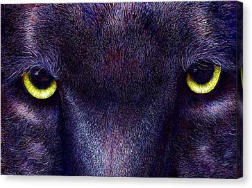 Hyptnotist The Black Panther Canvas Print by JoLyn Holladay