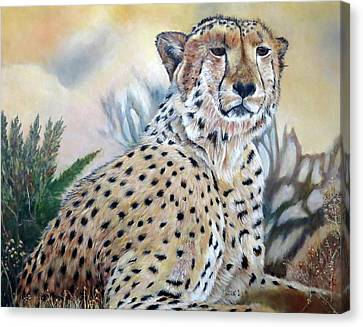 I Am Cheetah 2 Canvas Print