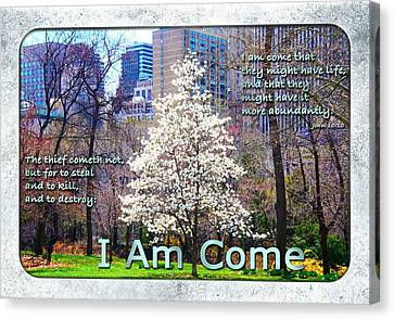 I Am Come Canvas Print by Terry Wallace