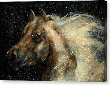 I Am In The Stars And In Your Heart Canvas Print by Barbie Batson