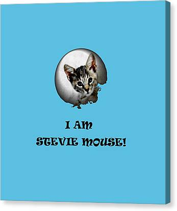 I Am Stevie Mouse Canvas Print by Dorothy Berry-Lound