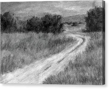 I Can See For Miles Study Canvas Print by David King