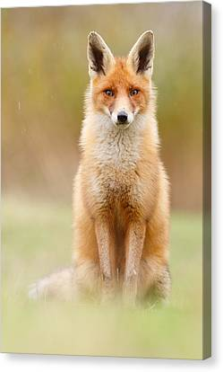 I Can't Stand The Rain Canvas Print by Roeselien Raimond
