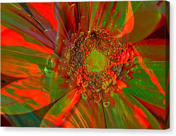 I Dreamed Of Flowers  Canvas Print