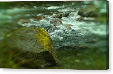 Snow Melt Canvas Print - I Dreamed Of The River by Jeff Swan