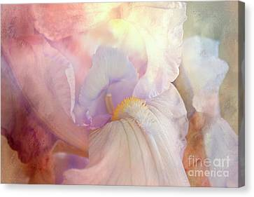 'i' For An 'eye' Canvas Print by Janie Johnson