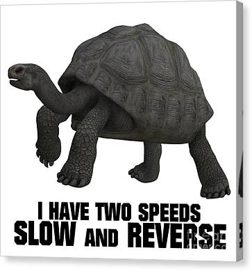I Have Two Speeds, Slow And Reverse Canvas Print