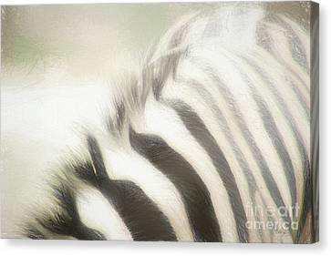 I Have Your Back Canvas Print by Cheryl Rose