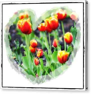 I Heart Tulips Canvas Print by Bill Cannon