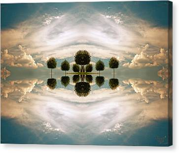 I Imagine The Paradise Canvas Print by Renata Vogl