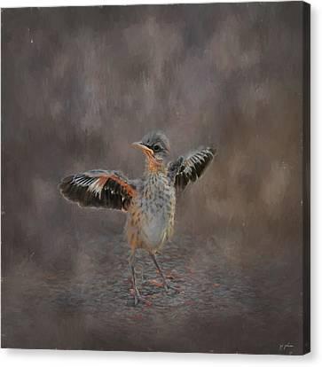 Mockingbird Canvas Print - I Know I Can Fly by Jai Johnson