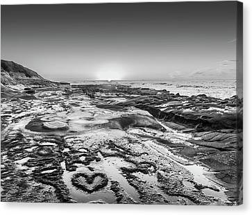 I Love You As Big As The Ocean Too  Black And White Canvas Print by Scott Campbell