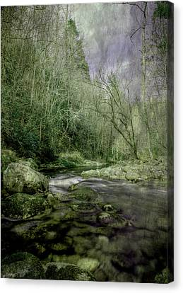 I Never Want It To End Canvas Print by Mike Eingle