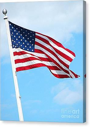 I Pledge Allegiance Canvas Print