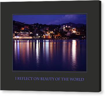 I Reflect On Beauty Of The World Canvas Print by Donna Corless