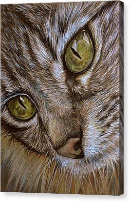 Canvas Print featuring the drawing I See by Heidi Kriel