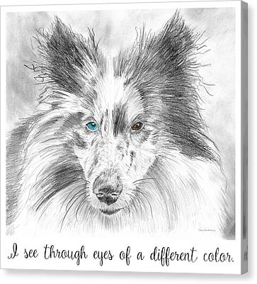 I See Through Eyes Of A Different Color Canvas Print by Amy Kirkpatrick