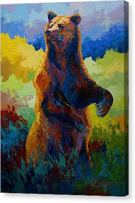 I Spy - Grizzly Bear Canvas Print by Marion Rose