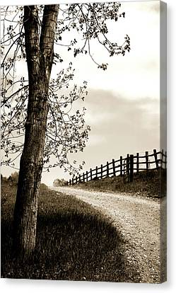 I Walk The Gravel Road 2 Canvas Print by Marilyn Hunt