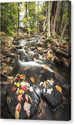 Stream Canvas Print - I Want More II by Jon Glaser