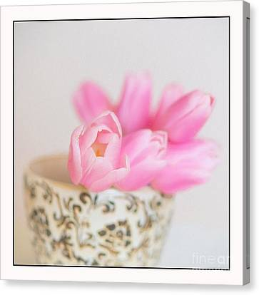 Pink Tulip Canvas Print - I Wish You Were Here by Carolyn Rauh