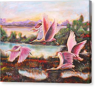 Scarlet Ibis Canvas Print by Patricia Piffath