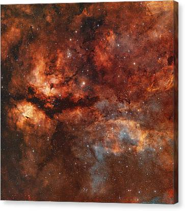 Ic 1318 And The Butterfly Nebula Canvas Print by Rolf Geissinger