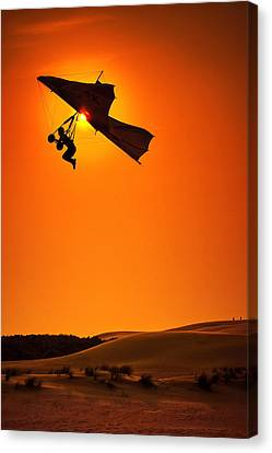 Icarus Canvas Print by Neil Shapiro