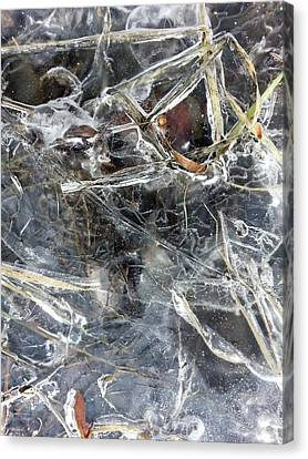 Ice Art I Canvas Print by Joanne Smoley