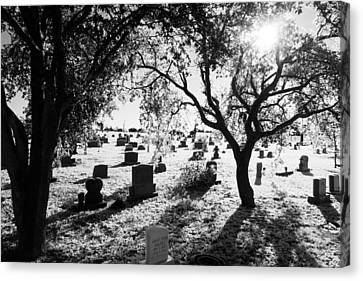 Ice Cemetery Canvas Print by Graham Dixon