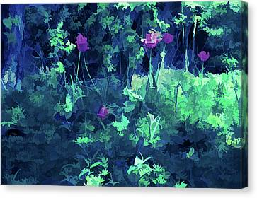 Ice Cold Backyard Tulips Canvas Print