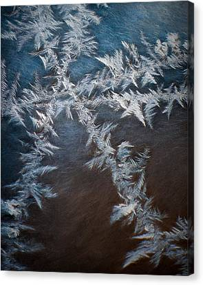 Ice Crossing Canvas Print by Scott Norris