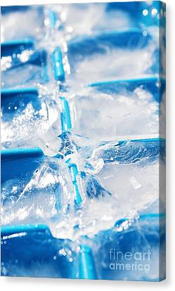 Ice Cubes Canvas Print by Carlos Caetano