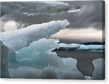 Ice Drama Canvas Print by Elisabeth Van Eyken
