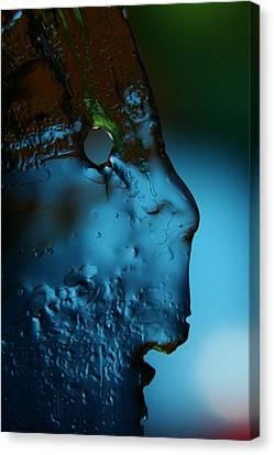 Ice Face Canvas Print by Rachelle Johnston